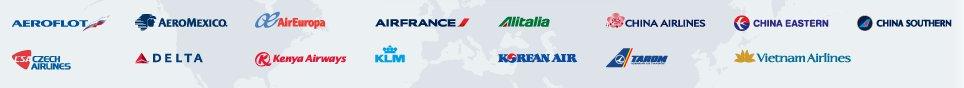 Liste des compagnies aériennes membres de SkyTeam